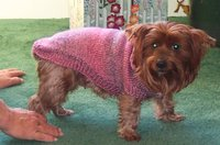 Chantillysweater